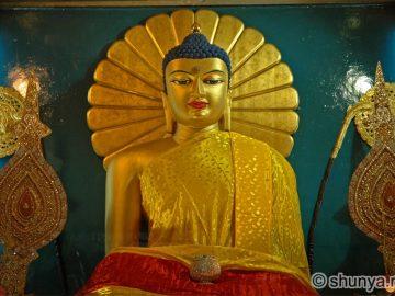 thebuddha14