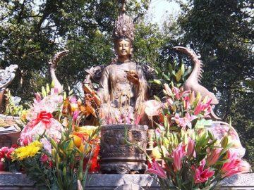 dau-xuan-van-canh-den-thuong-noi-cao-hon-ca-dinh-yen-tu-30668-13